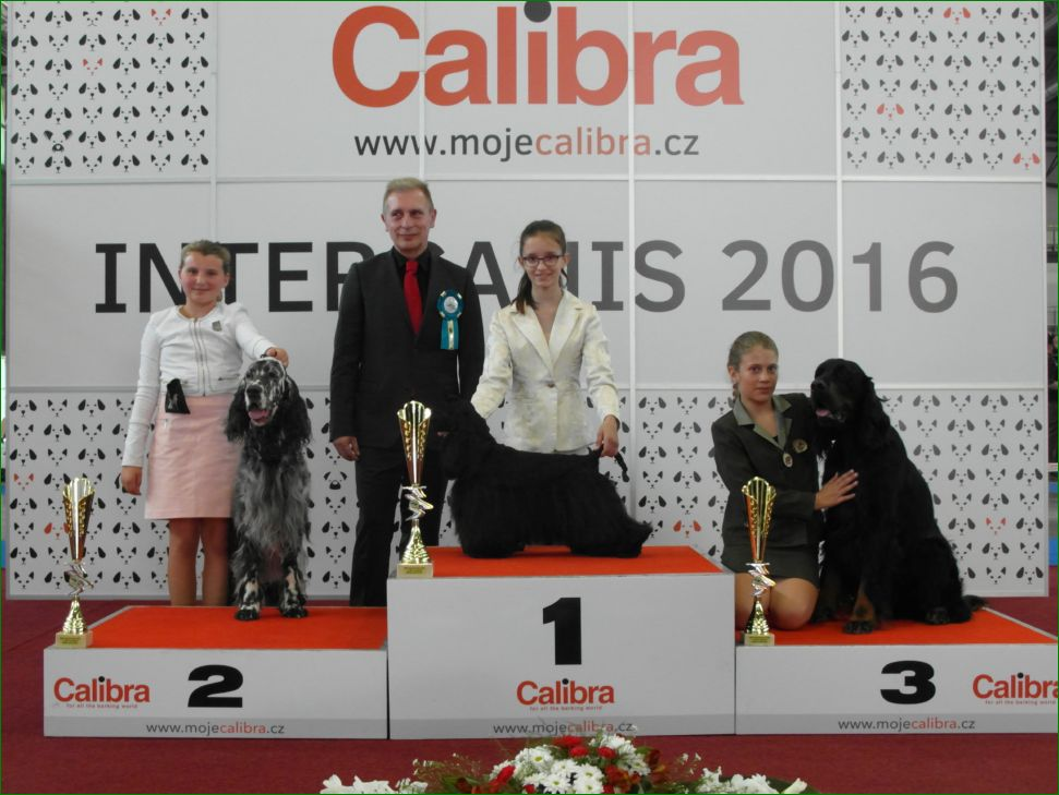 Junior Handler, 9-13 years (Saturday, 18 June 2016) - BIS CACIB Intercanis Brno 2016 (Czech Republic), 18-19 June 2016