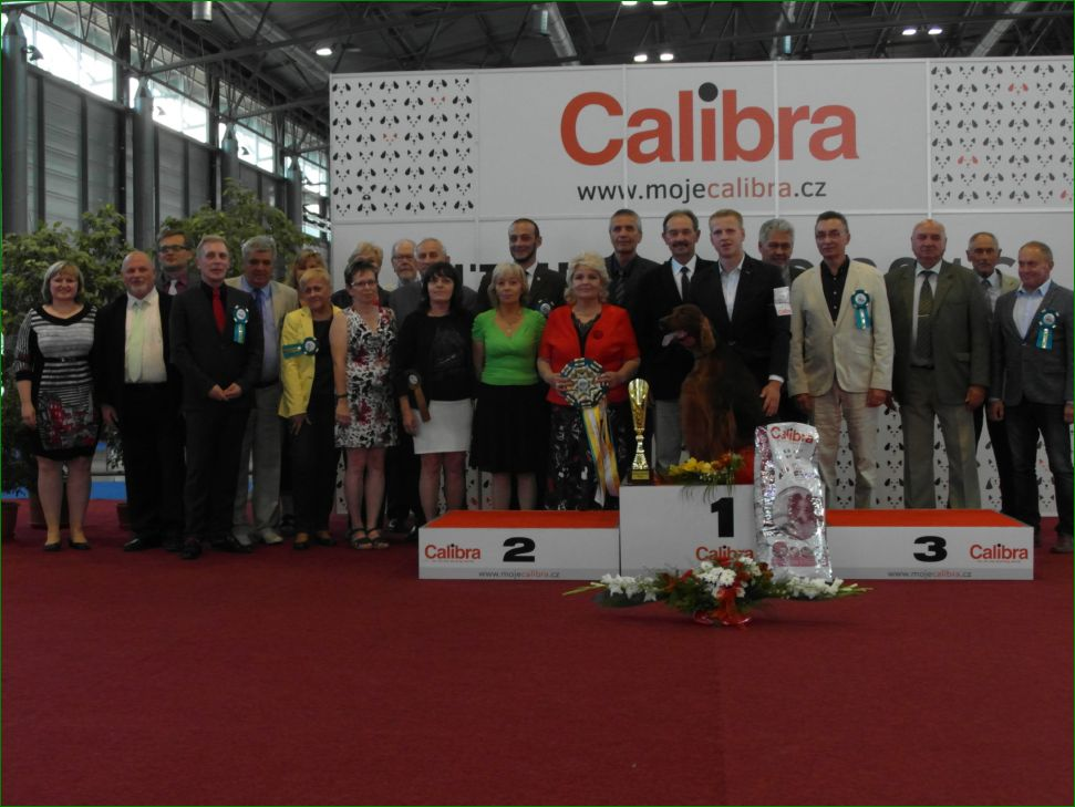 Best Dog of the Day (Saturday, 18 June, 2016) - BIS CACIB Intercanis Brno 2016 (Czech Republic), 18-19 June 2016