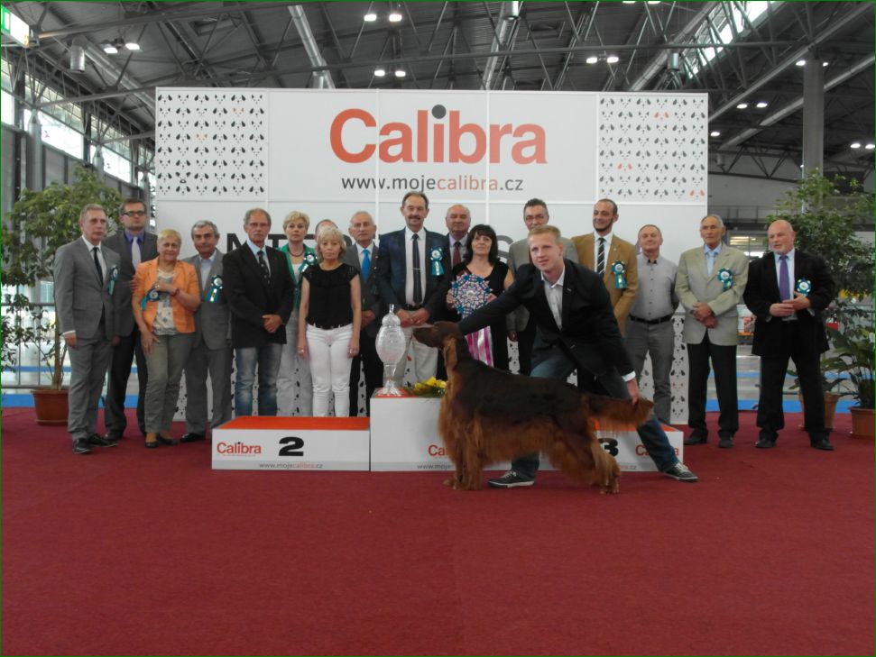 Best in Show (BIS) - BIS CACIB Intercanis Brno 2016 (Czech Republic), 18-19 June 2016